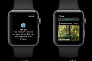 watchOS5注目の機能、「AppleWatch版のWebブラウザ」ってどんな機能?