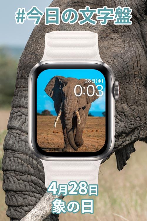 4月28日「象の日」のApple Watch文字盤