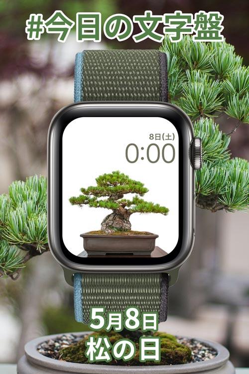 5月8日「松の日」のApple Watch文字盤