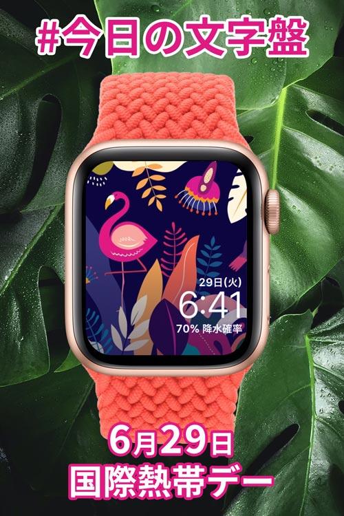6月29日「国際熱帯デー」のApple Watch文字盤